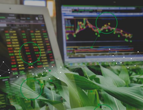Grain Price Risk Management